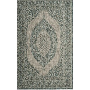 Myers Light Gray/Teal Indoor/Outdoor Area Rug