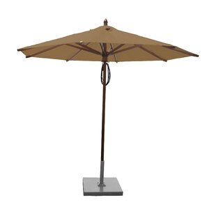 Darby Home Co Samantha 9' Market Umbrella