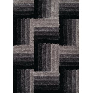 Find Fitts Hand-Woven Black Area Rug By Wrought Studio