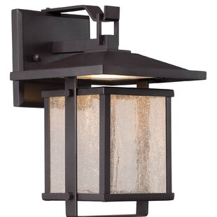 Olivarez Outdoor Wall Lantern