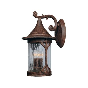 Loon Peak Waneta Outdoor Wall Lantern
