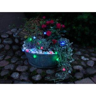 Novelty Fairy Lights By Symple Stuff