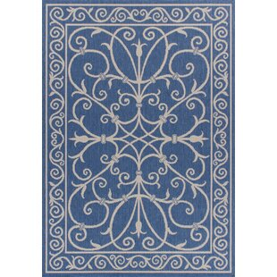 Ricky Weather-Proof Blue Indoor/Outdoor Area Rug