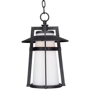 Half Dome 1-Light Outdoor Hanging Lantern