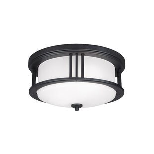 Dunkley 2-Light Outdoor Flush Mount By Darby Home Co Outdoor Lighting