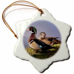 Duck Ornament Wayfair