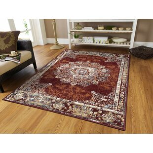Schubert Red Indoor/Outdoor Area Rug