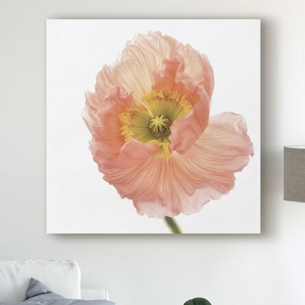 The Pink Poppy by Lotte Gronkjar - Photograph on Canvas