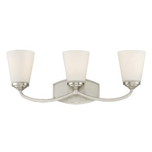Andover Mills Pittman 3-Light Vanity Light