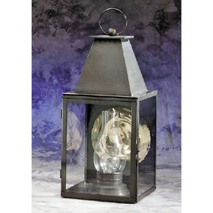 Beltran 1-Light Outdoor Wall Lantern by D..