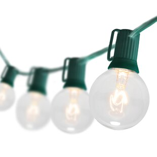 Wintergreen Lighting 25-Light Globe String Lights