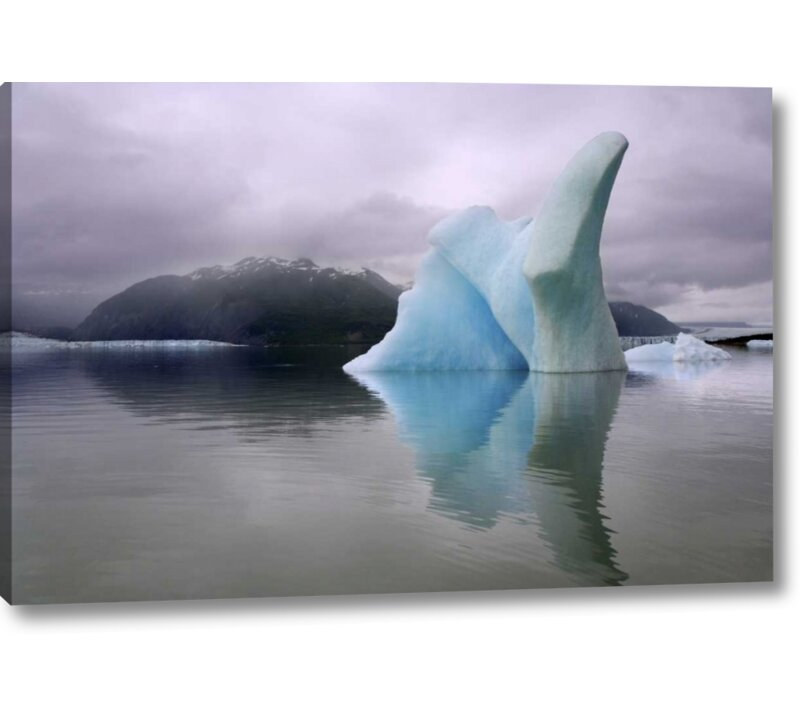 World Menagerie Alaska Alsek River Valley Iceberg On Alsek Lake Photographic Print On Wrapped Canvas Wayfair