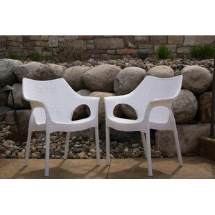 Rockwell Carina Weatherproof Patio Chair (Set Of 2) by Wrought Studio Best