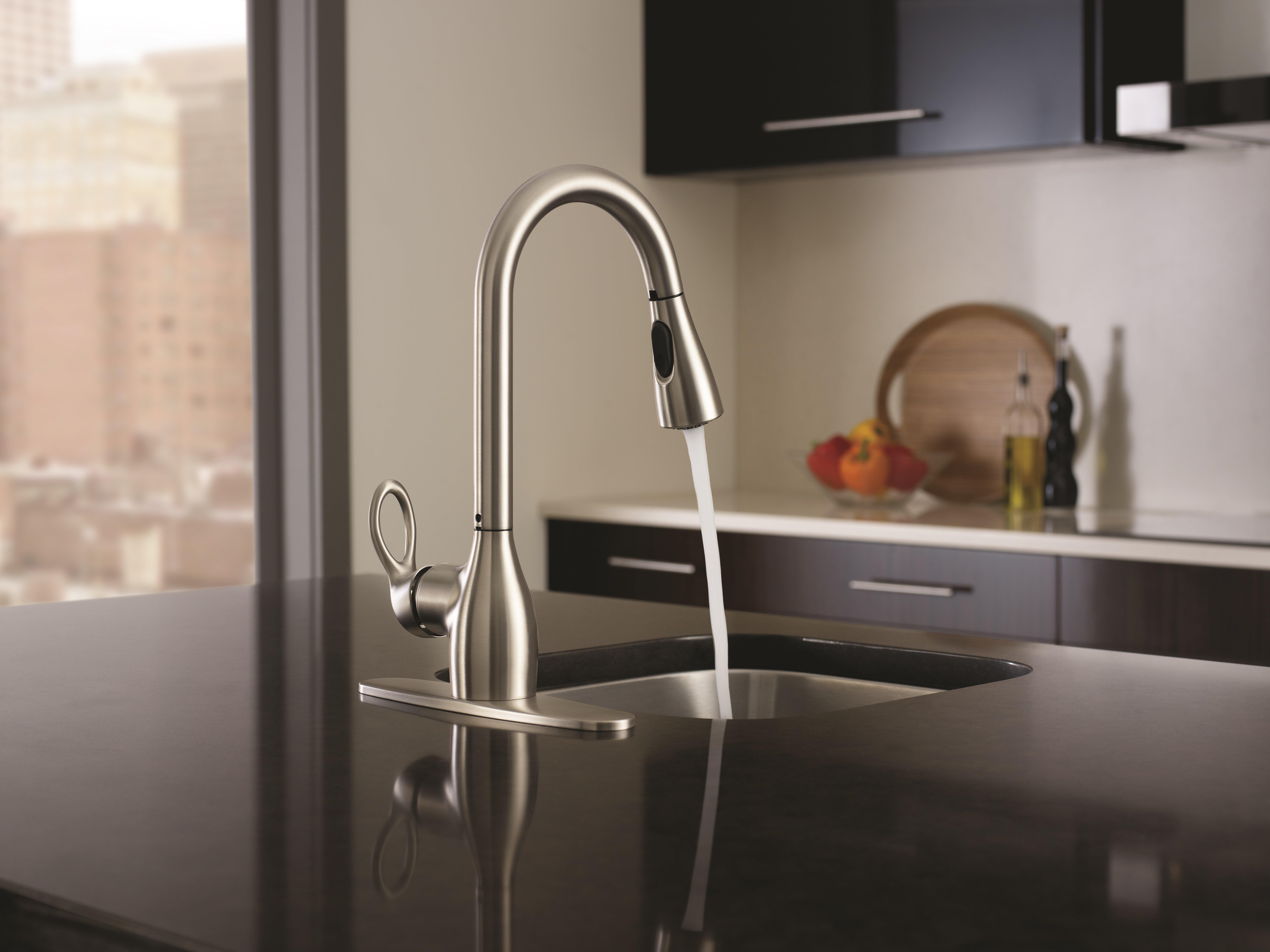 Moen Kleo Single Handle Kitchen Faucet With Duralock And Reflex Reviews Wayfair