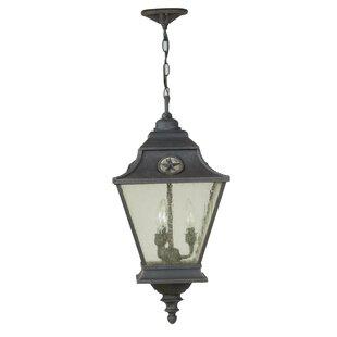 Charlton Home Osmond 3-Light Outdoor Hanging Lantern