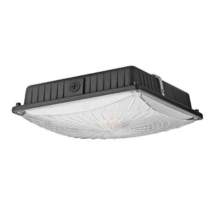 LED Outdoor Flush Mount By Truex Lighting