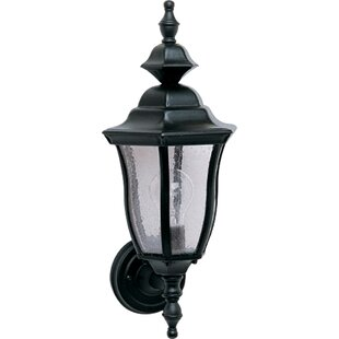 Jessamine 1-Light Outdoor Sconce by Darby Home Co