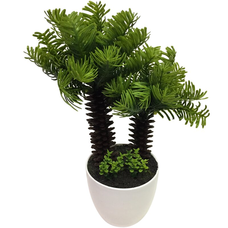 Wrought Studio Bonsai Palm Tree Reviews Wayfair