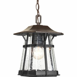 Shop For Triplehorn 1-Light Casual  Hanging Lantern By Alcott Hill