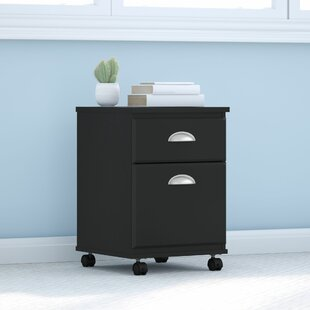 Connecticut 2 Drawer Mobile Vertical Filing Cabinet
