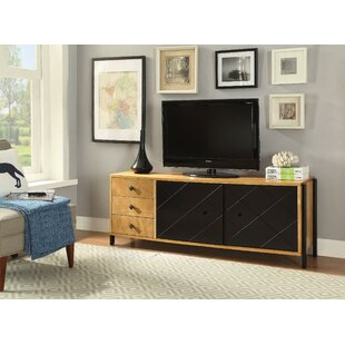 Yaretzi TV Stand for TVs up to 60