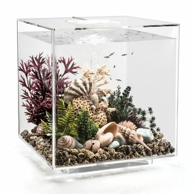 "Led Aquarium Tank Biorb Size: 17"" H X 15.7"" W X 15.7"" D, Color: Transparent"