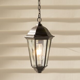Kenwood 1-Light Hanging Lantern By Lark Manor Outdoor Lighting