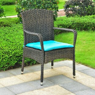 Harbin Resin Wicker Patio Dining Chair With Cushion
