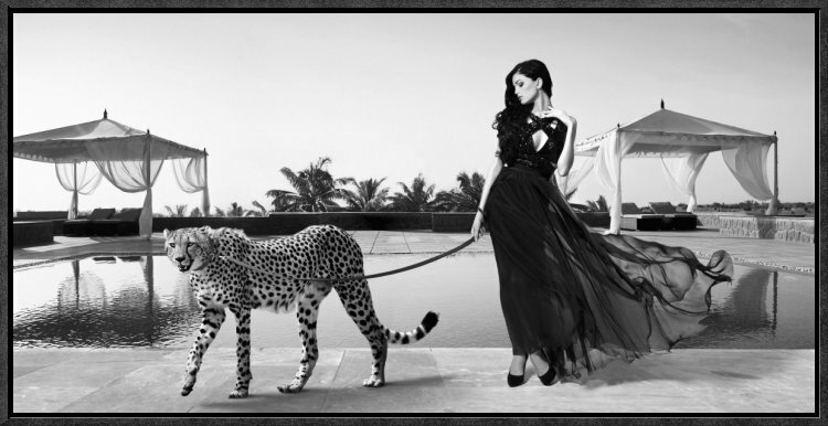 Global Gallery Woman With Cheetah By Lauren Framed Photographic Print Wayfair