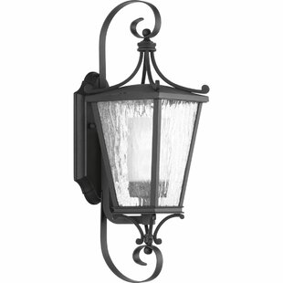 Alexandra 1-Light Wall Lantern by Fleur De Lis Living