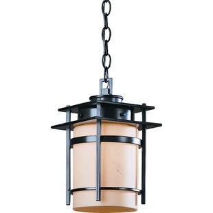 Hubbardton Forge Orlean 1-Light Outdoor Pendant