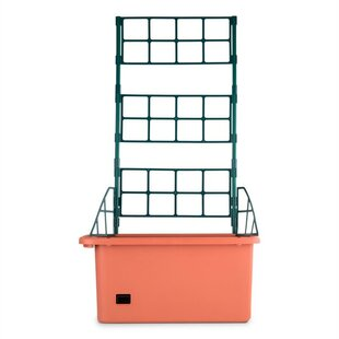 Power Plastic Self-Watering Planter Box With Trellis By Waldbeck