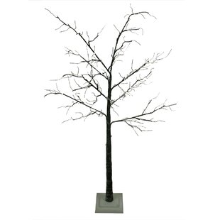 6 black artificial christmas tree with 96 warm led clearwhite lights - Christmas Tree Black And White