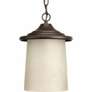 Crestside 1-Light Outdoor Hanging Lantern