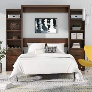 Brayden Studio Delapaz Queen Storage Murphy Bed