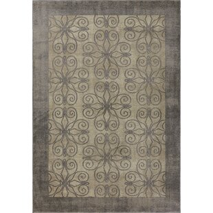 Best Reviews Winston Looking Glass Greige Area Rug By Libby Langdon