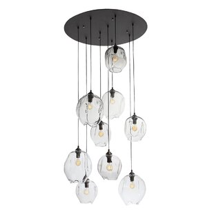 Hegewisch 9-Light Cluster Pendant by Brayden Studio