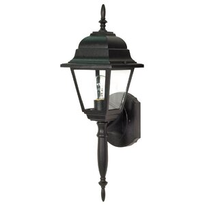 Briton 1-Light Outdoor Sconce