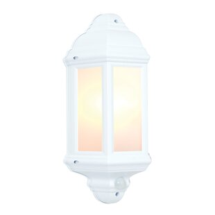 Haine 1 Light Outdoor  Wall Lantern With Motion Sensor By Sol 72 Outdoor