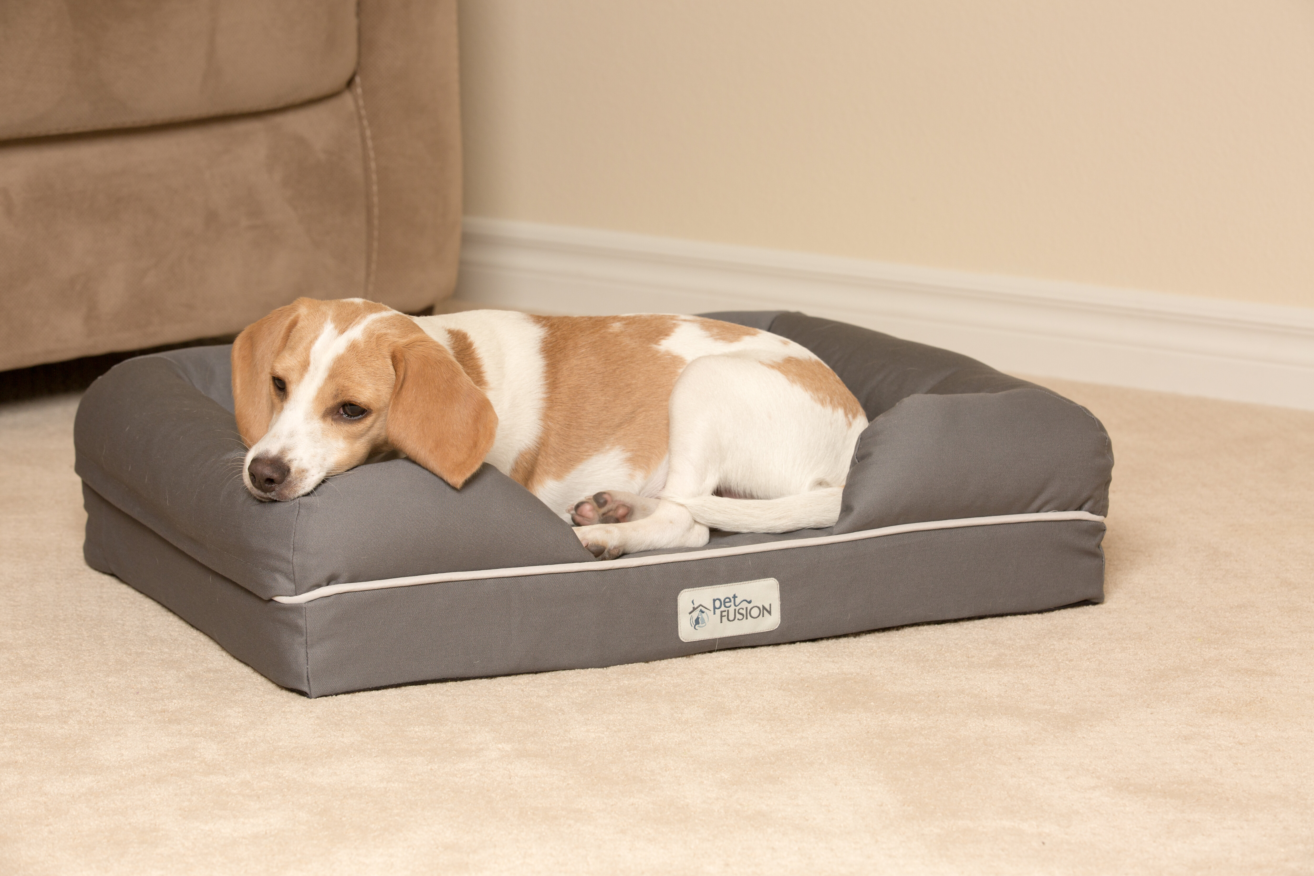 large x foam walmart removable bed with cover dog memory com ip