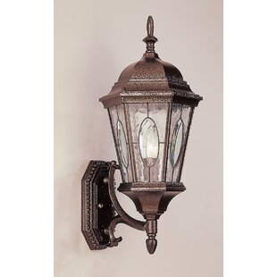 Best Reviews Hensen 1-Light Outdoor Sconce By Alcott Hill