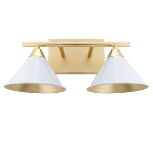 Read Reviews Figgs Metal 2-Light Vanity Light By Everly Quinn