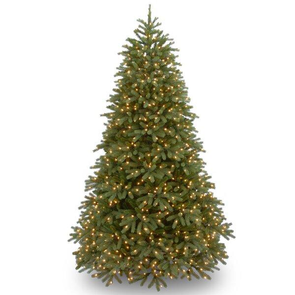 Willa Arlo Interiors Jersey Fraser Fir 7.5' Green Fir Artificial Christmas  Tree with 1000 Clear Lights and Stand & Reviews | Wayfair - Willa Arlo Interiors Jersey Fraser Fir 7.5' Green Fir Artificial