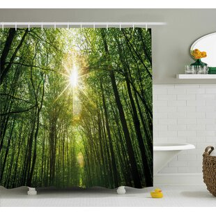 Liz Forest Summer Trees Upward View With Sunrays Leaking From Branches Nature Image Single Shower Curtain