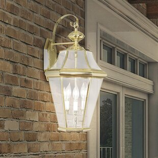 Darby Home Co Violetta 3-Light Outdoor Wall Lantern