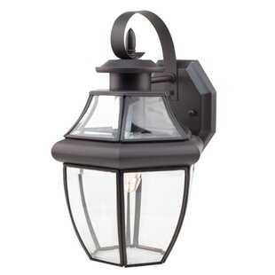 Darby Home Co Thiel 1-Light Wall Lantern