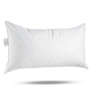 Down Feather Throw Pillows You Ll Love In 2021 Wayfair