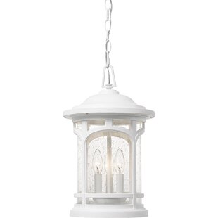 Sheppard 3-Light Outdoor Hanging Lantern