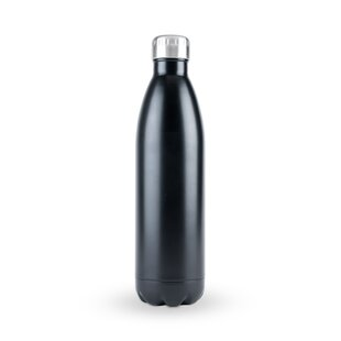 25 Oz. Stainless Steel Water Bottle