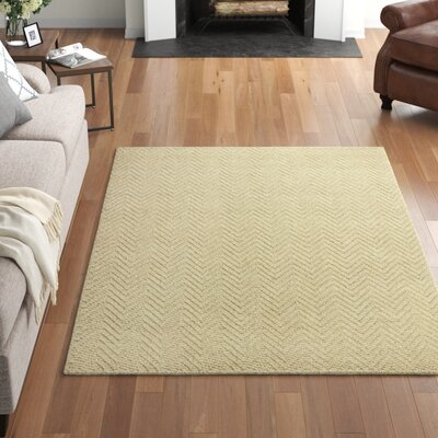 Abaca Rug Wayfair